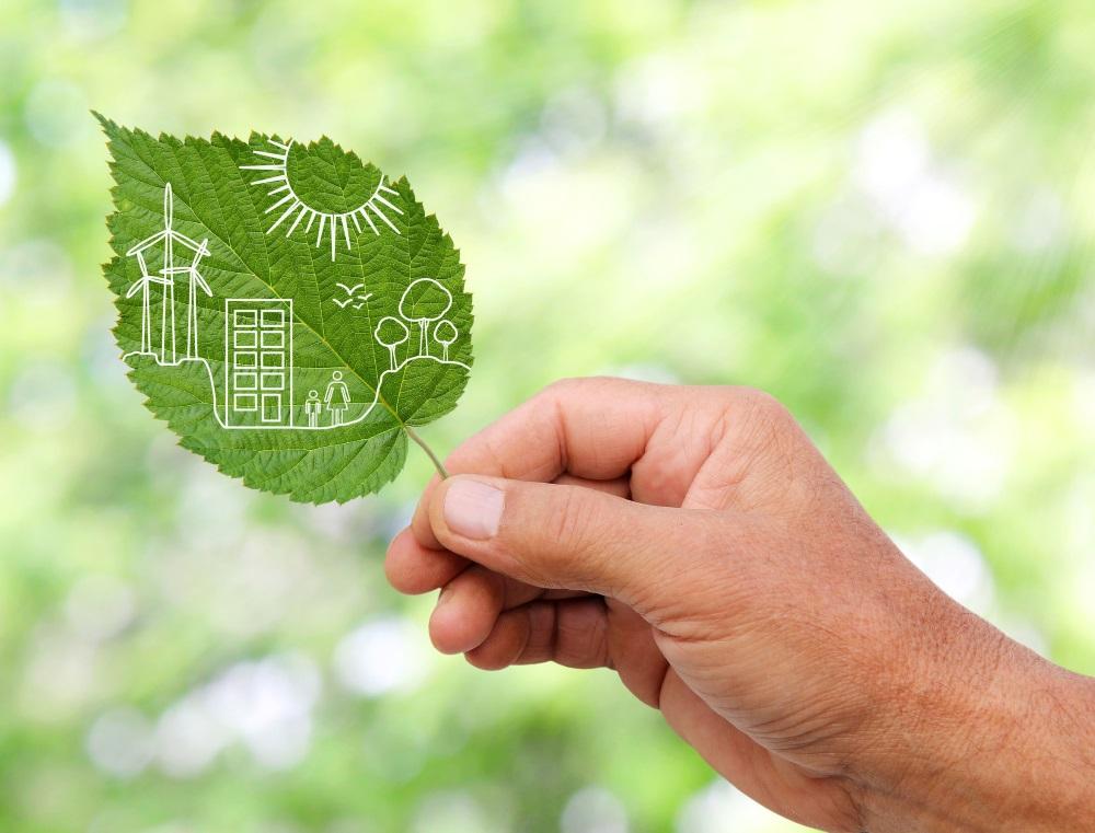 Hand hält grünes Blatt mit Grafik